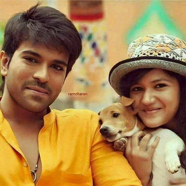 Yevadu 2 Ramcharanteja South Star Hello Pictures Cute Baby Videos