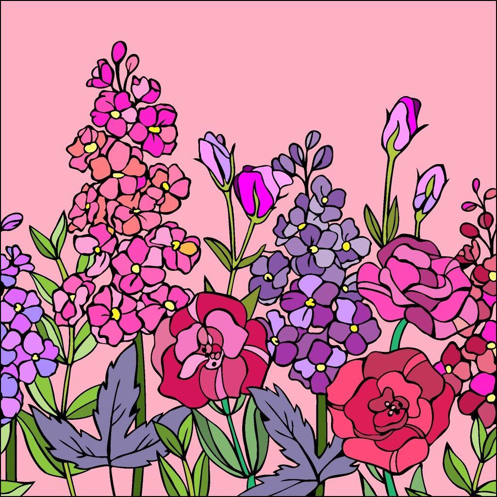 Пин от пользователя титорова на доске цветы | Рисунки ...