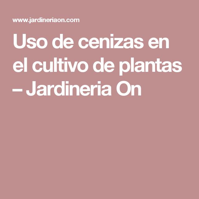 Uso de cenizas en el cultivo de plantas – Jardineria On