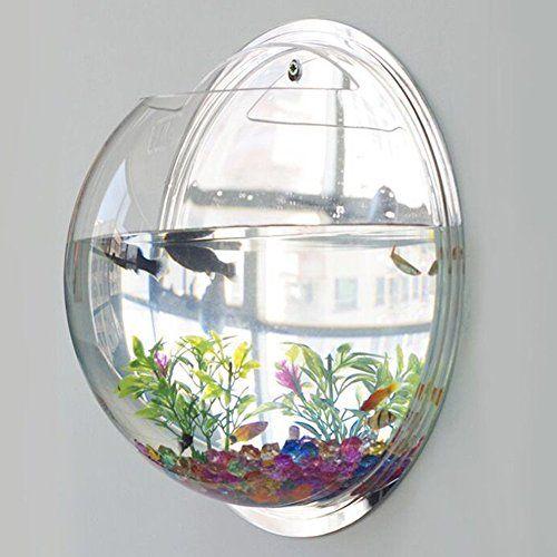How To Decorate Fish Bowl Modekini Wall Mount Bubble Fish Bowl Aquarium Plant Pot Home Wall