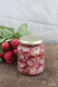 Photo of {Delicious Fermented} Radish Kimchi