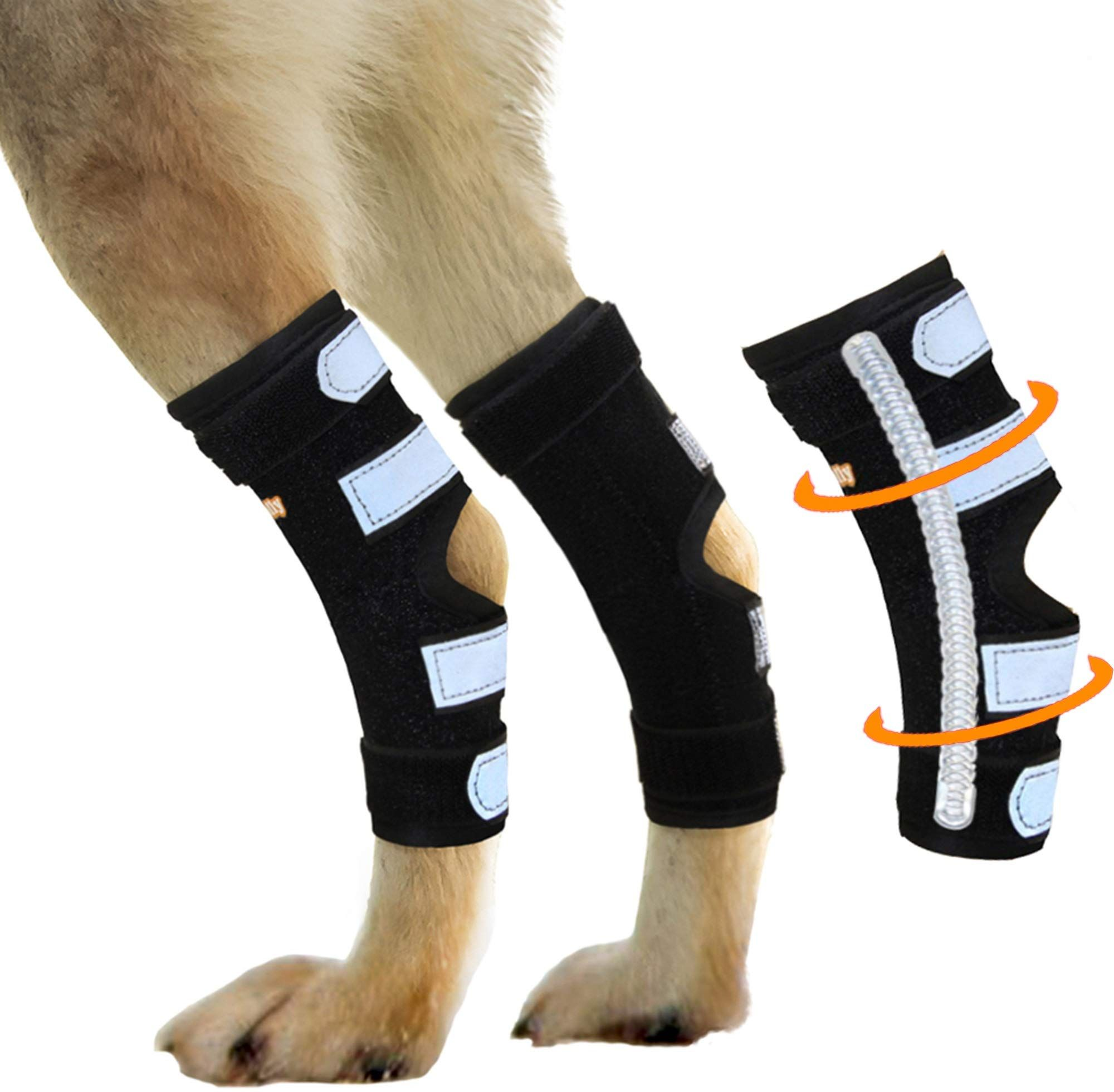 NeoAlly Dog Braces for Back Legs Super Supportive with