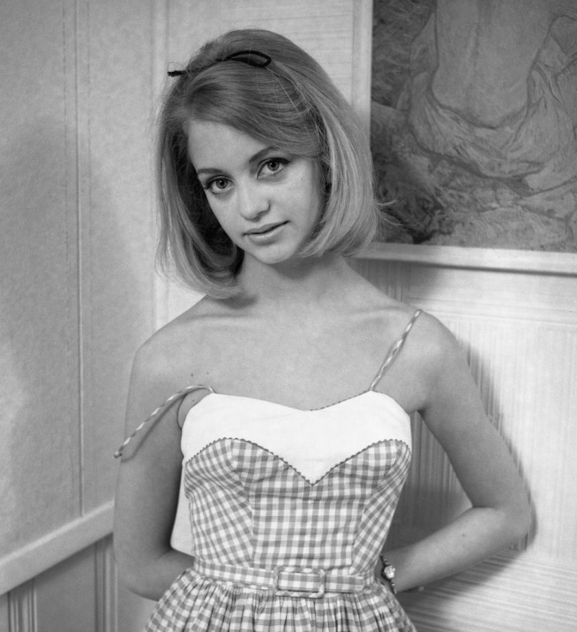 Gals In Gingham Goldie Hawn Goldie Hawn Young Actresses