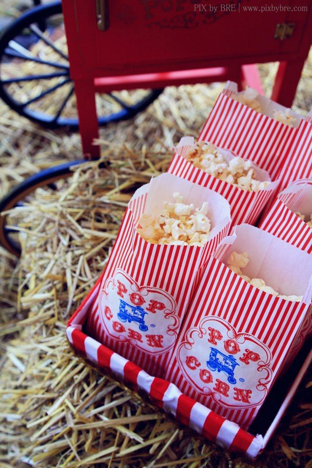 Vintage popcorn bags for cheap vintage circus carnival party ideas dessert for birthday www - Cheap circus decorations ...