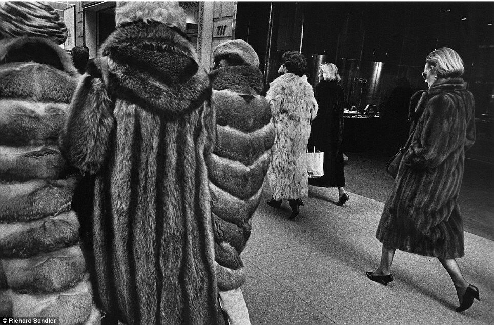 Copy Richard Sandler: Ladies who lunch: Women stalk Manhattan's Fifth Avenue clad in expensive