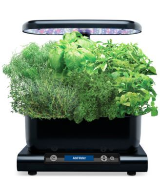 Aerogarden Gourmet Herb 6 Pod Refill Kit Reviews Small 400 x 300