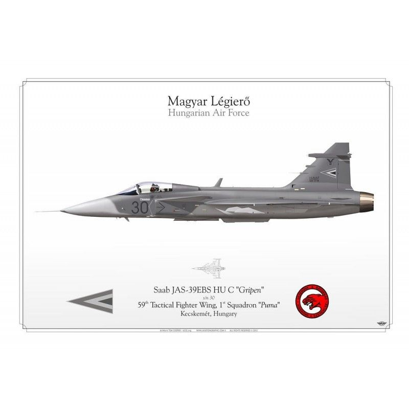 Jas 39ebs Gripen Haf Jp 171 Aviationgraphic Military Graphics Military Aircraft Fighter