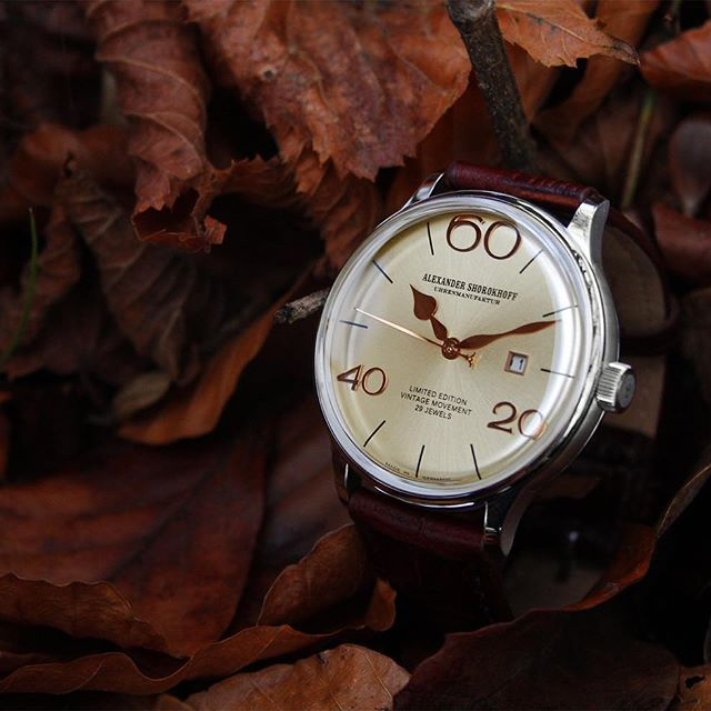 The leaves are falling, the nature is constantly changing, but the design of our new vintage V5 is timeless.  #alexandershorokhoff #vintagemovement #artonthewrist #v5 #alexandershorokhoff #new #vintagewatch #artonthewrist #avantgarde #v5 #luxusuhr #flachesuhrwerk #slimmovement #vintage #dial #movement #automatic #handwinding