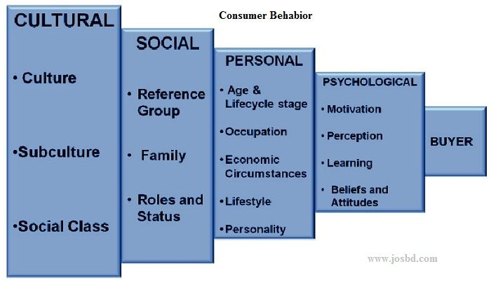 What Is Consumer Behavior in Marketing? - Factors, Model & Definition