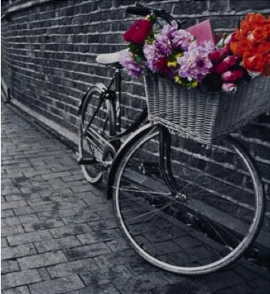 Cuadro en blanco y negro de bicicleta con flores a color - Cuadro blanco y negro ...