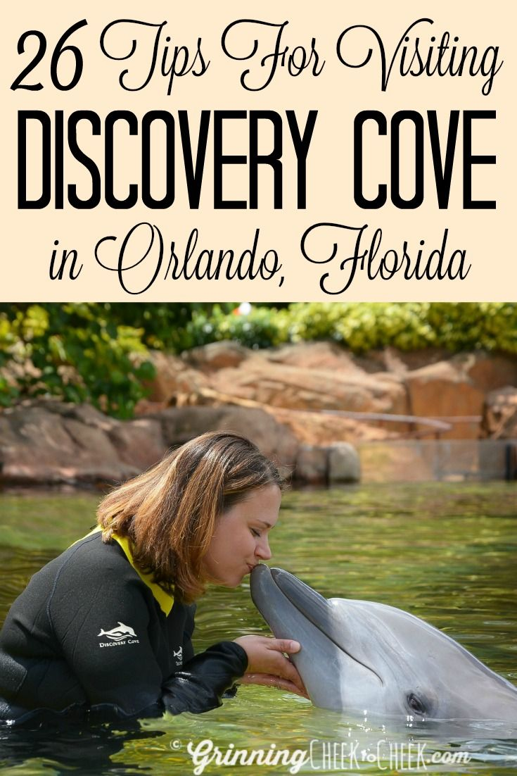 Tips For Planning Your Seaworld Orlando Vacation 26 Tips For Visiting Discovery Cove In Orlando Florida I Discovery Cove Discovery Cove Florida Orlando Travel