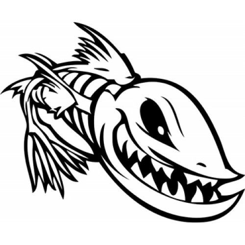 Fish Skeleton Stock Illustration F FLY TYING - Decals for boat motorsoutboarddecalscom s of decals in stock