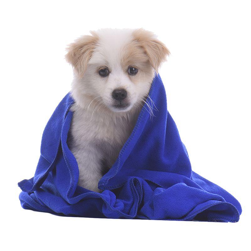 Pet Drying Towel Soft Warm Dog Bath Towels Puppy Cat Cushion