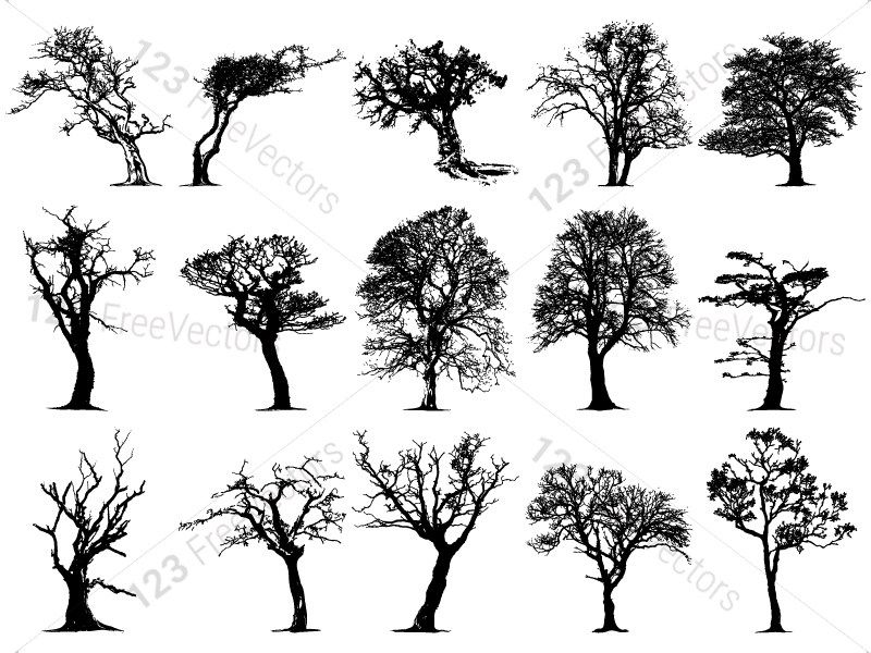 Tree Silhouettes Vector And Photoshop Brush Pack 05 Tree Silhouette Silhouette Vector Photoshop Brushes