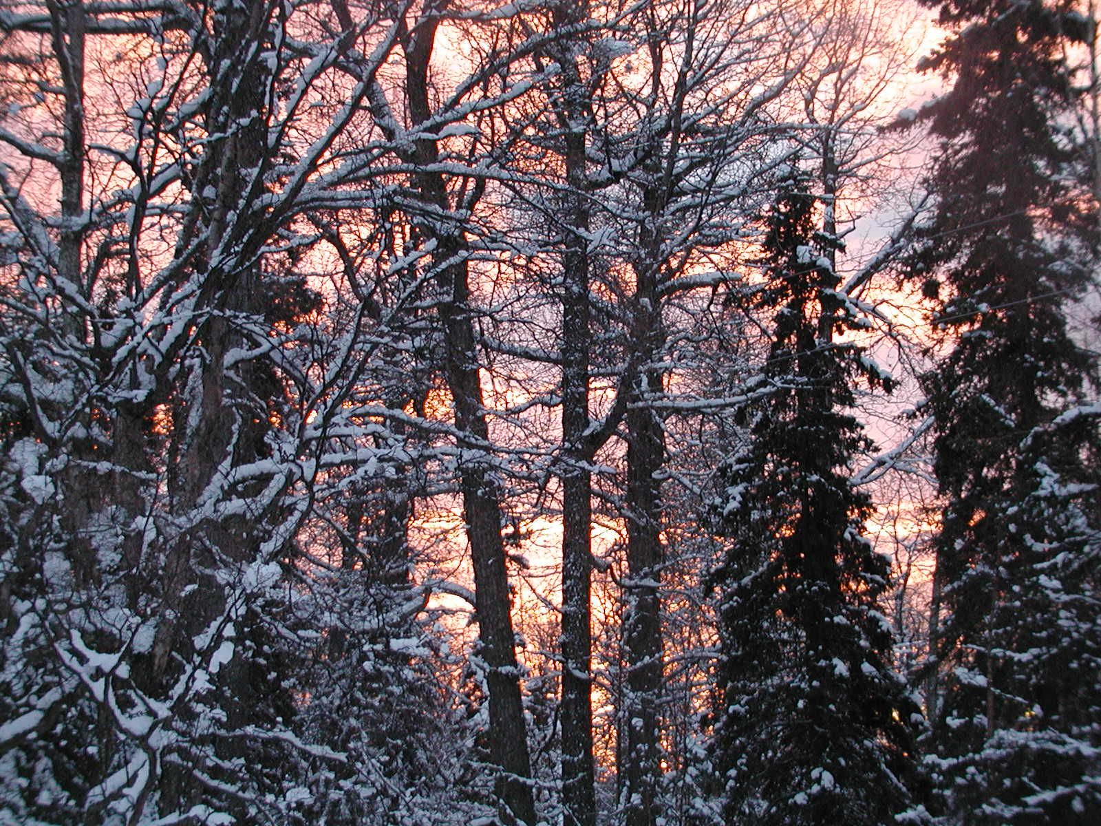 Pretty sunset in Anchorage. Alaska, My home, Outdoor
