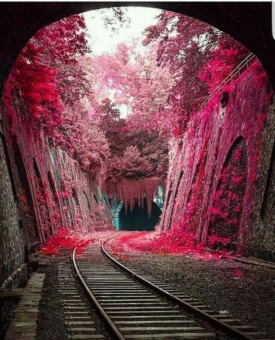 Túnel na França.