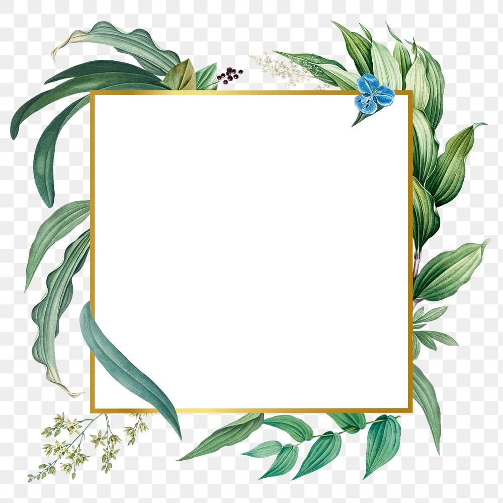 Empty Frame With Green Leaves Design Element Premium Image By Rawpixel Com Adj Flower Illustration Design Element Leaf Design
