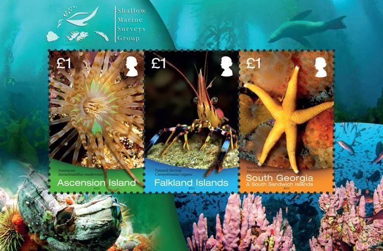 2013 Falkland Island New Issues