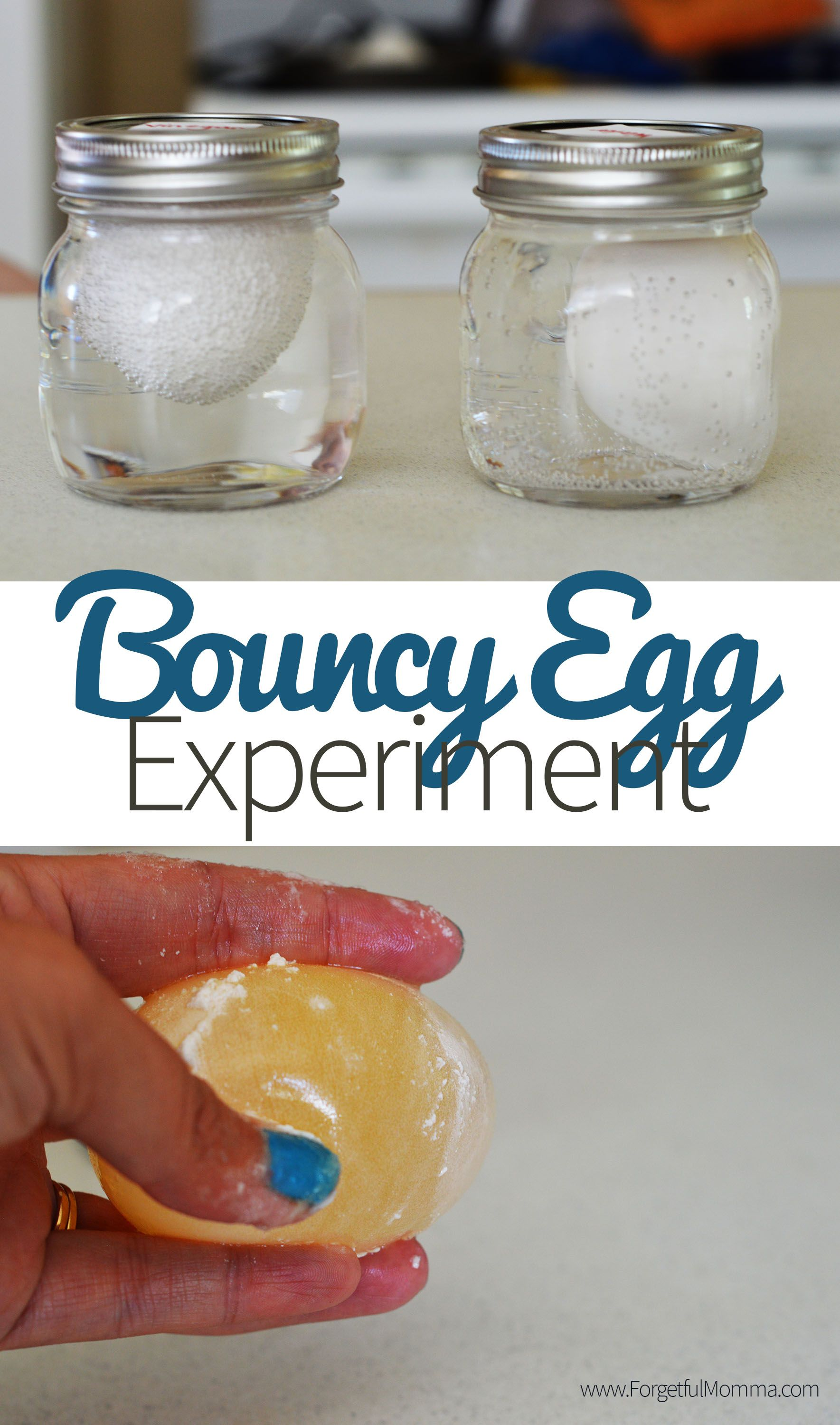 Bouncy Egg Experiment - Cool Science for Kids