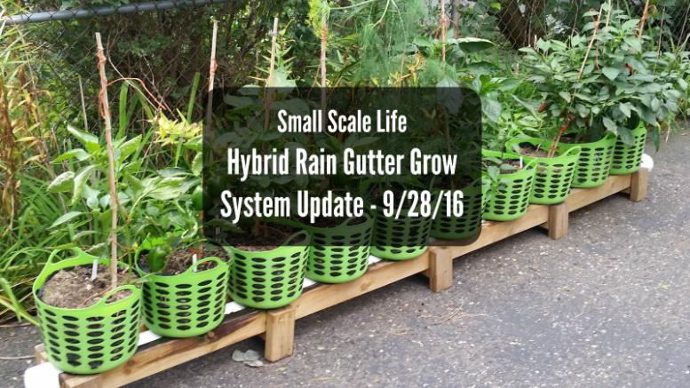 Hybrid Rain Gutter Grow System Update 9 28 16 Small Scale Grow System Rain Gutters Growing