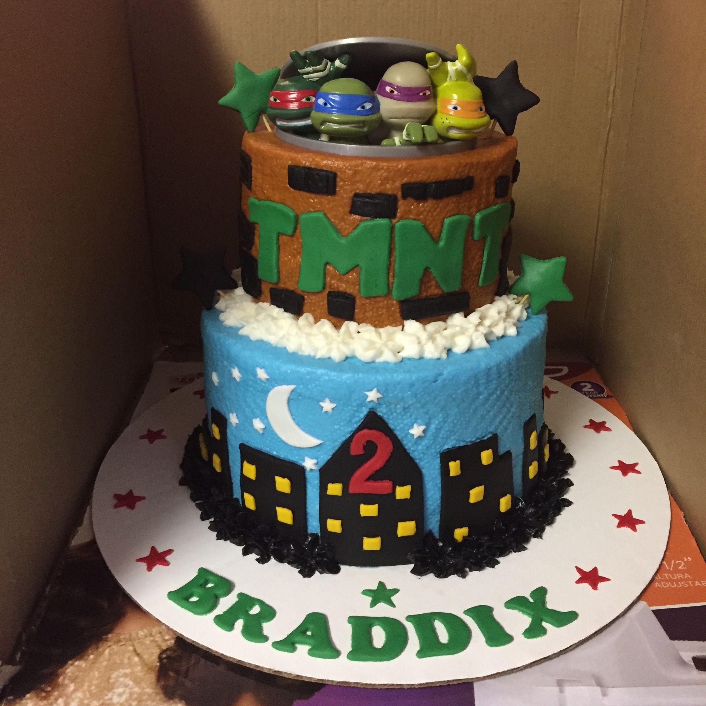 Teenage Mutant Ninja Turtle Birthday Cake Two Layer Icing And