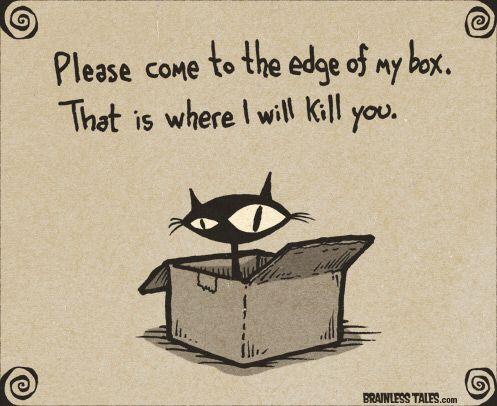 Image from http://www.brainlesstales.com/images/2012/Dec/cat-box.jpg.