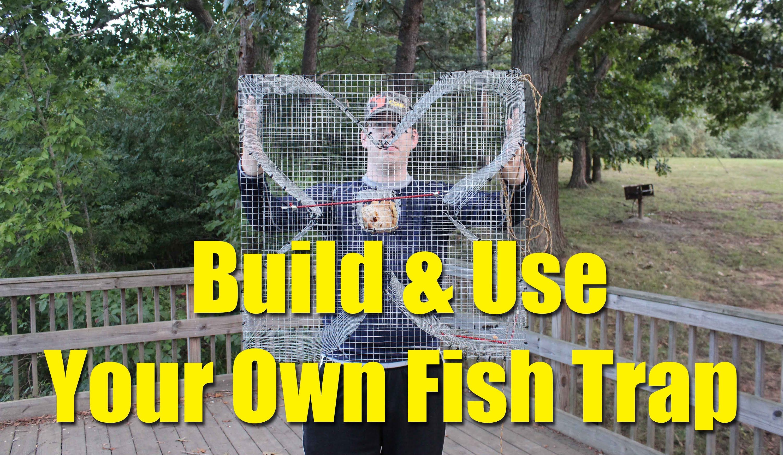 Build A Fish Trap And Catch Catfish Bait  Four Leaf Clover Fish Trap Fo