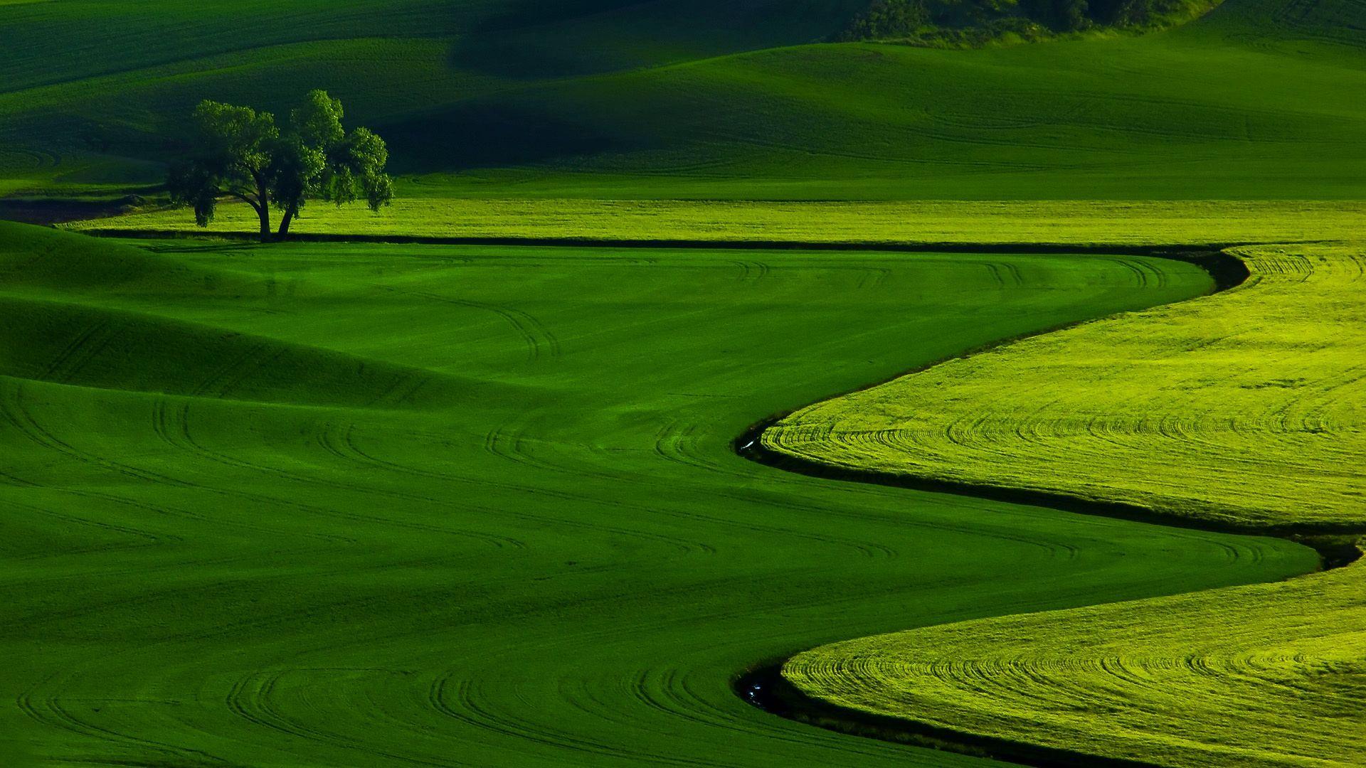 Hd Wallpaper Nature 1080p Blogua Free Ultra Hd 3840x2160 High Definition Wallpaper Green Nature Wallpaper Green Landscape Beautiful Landscape Photography