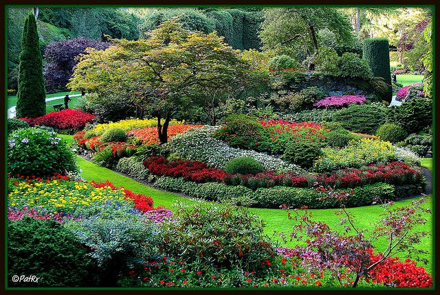 Butchart Gardens    Located in Victoria, BC, Canada, Butchart Gardens offers a jaw-dropping display of some of the most beautiful flowers in the world. #butchartgardens
