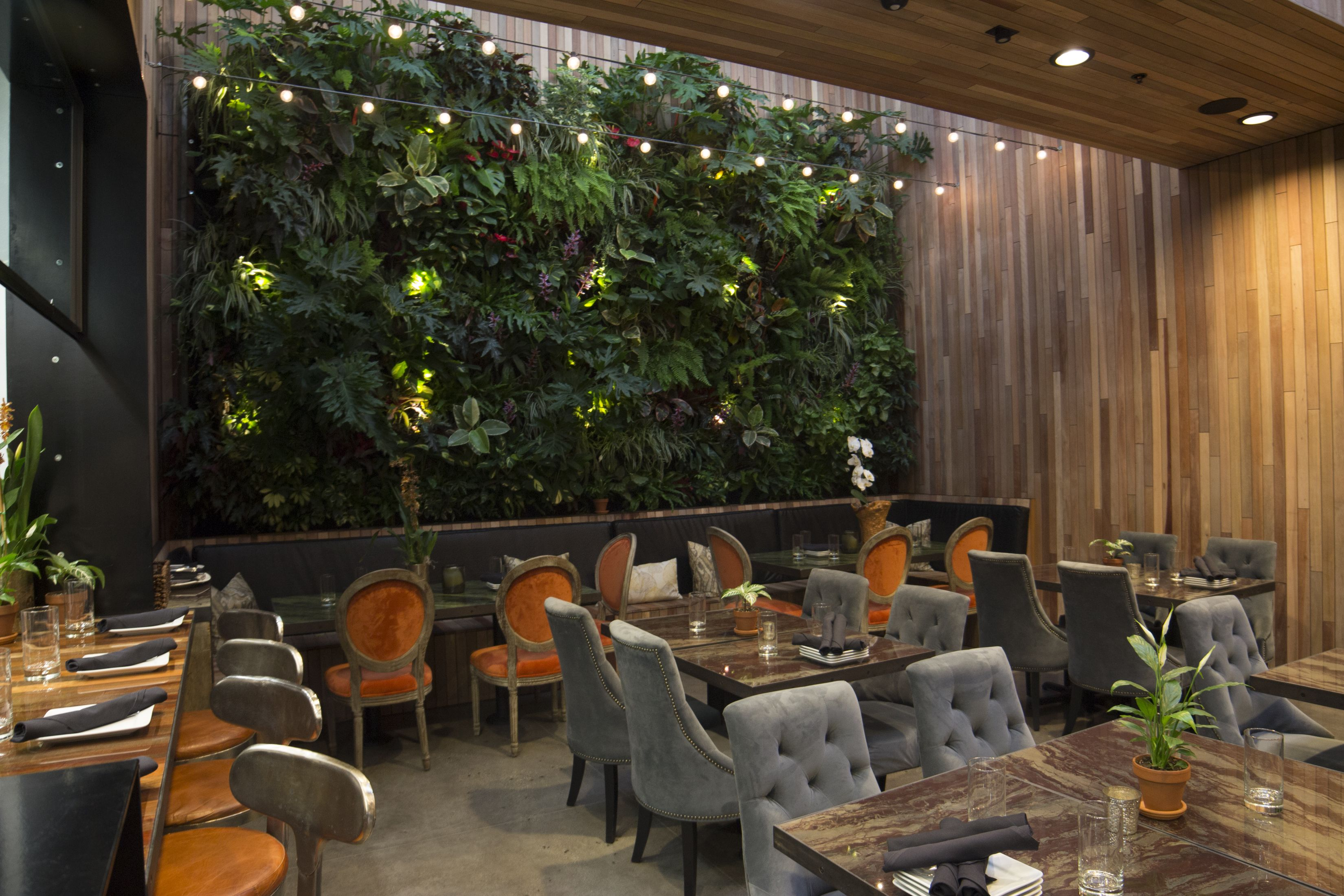 Living Green Wall at The Patio on Goldfinch in 2019 ... on Green Wall Patio id=94749