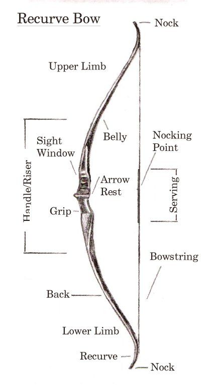 anatomy of recurve bow | Bows, Arrows & Knives | Pinterest | Recurve ...