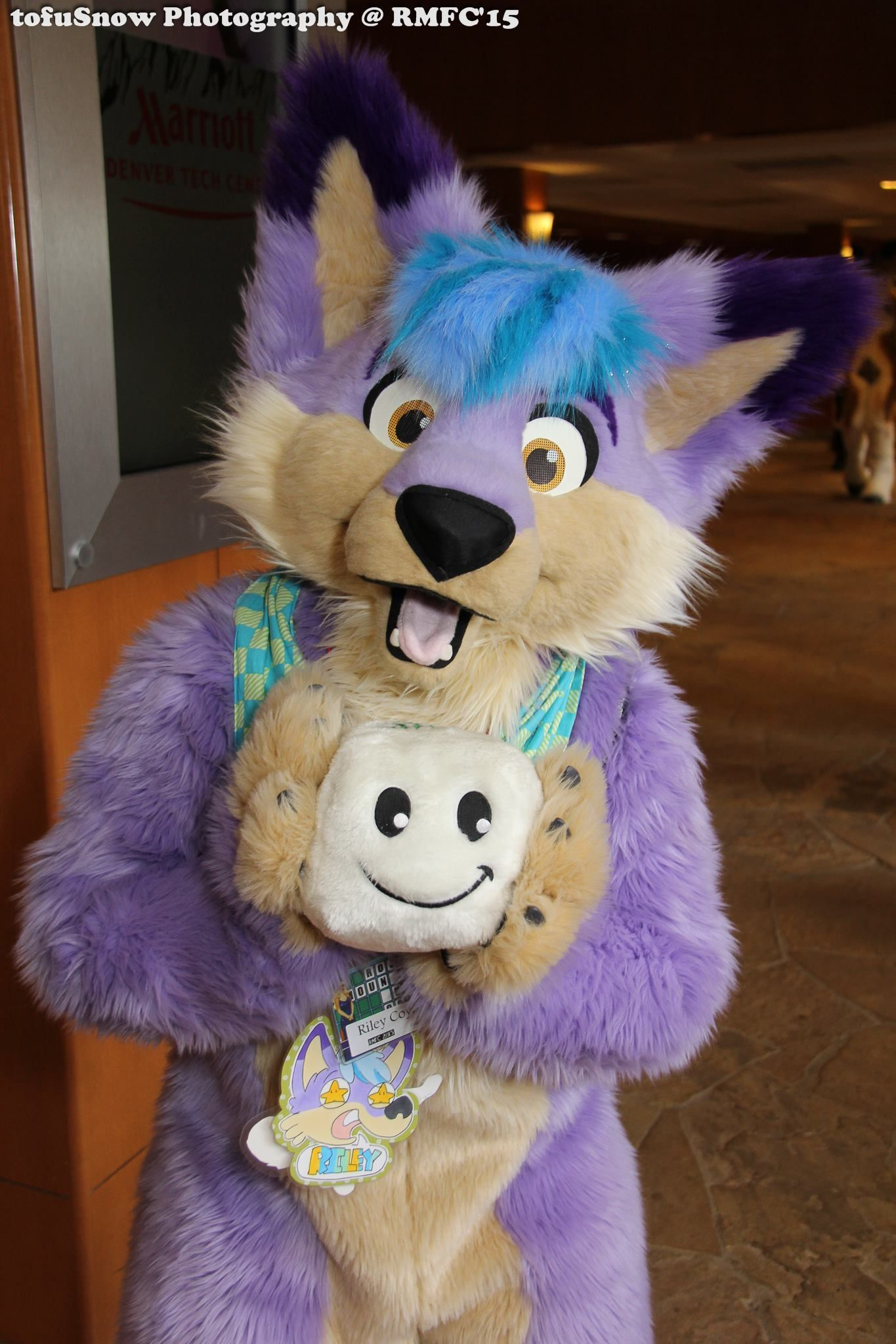 Riley the Purple Coyote at Rocky Mountain Fur Con 2015 ...