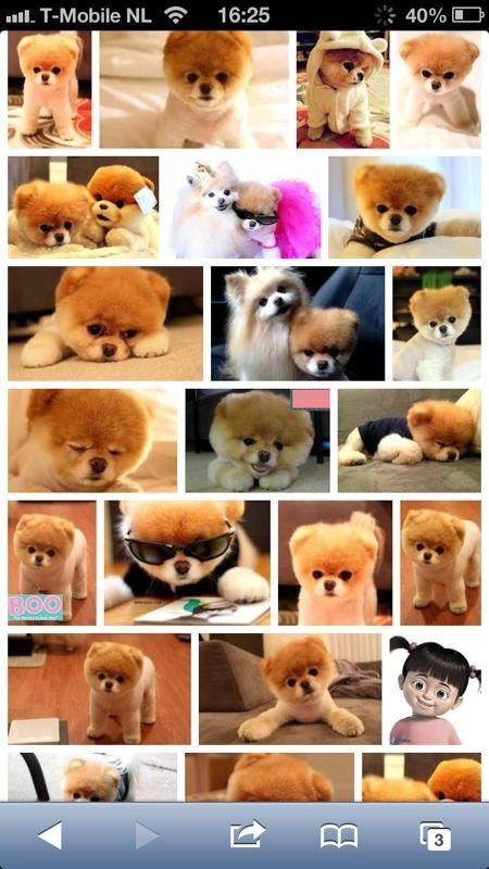 OMG!  I need one too!