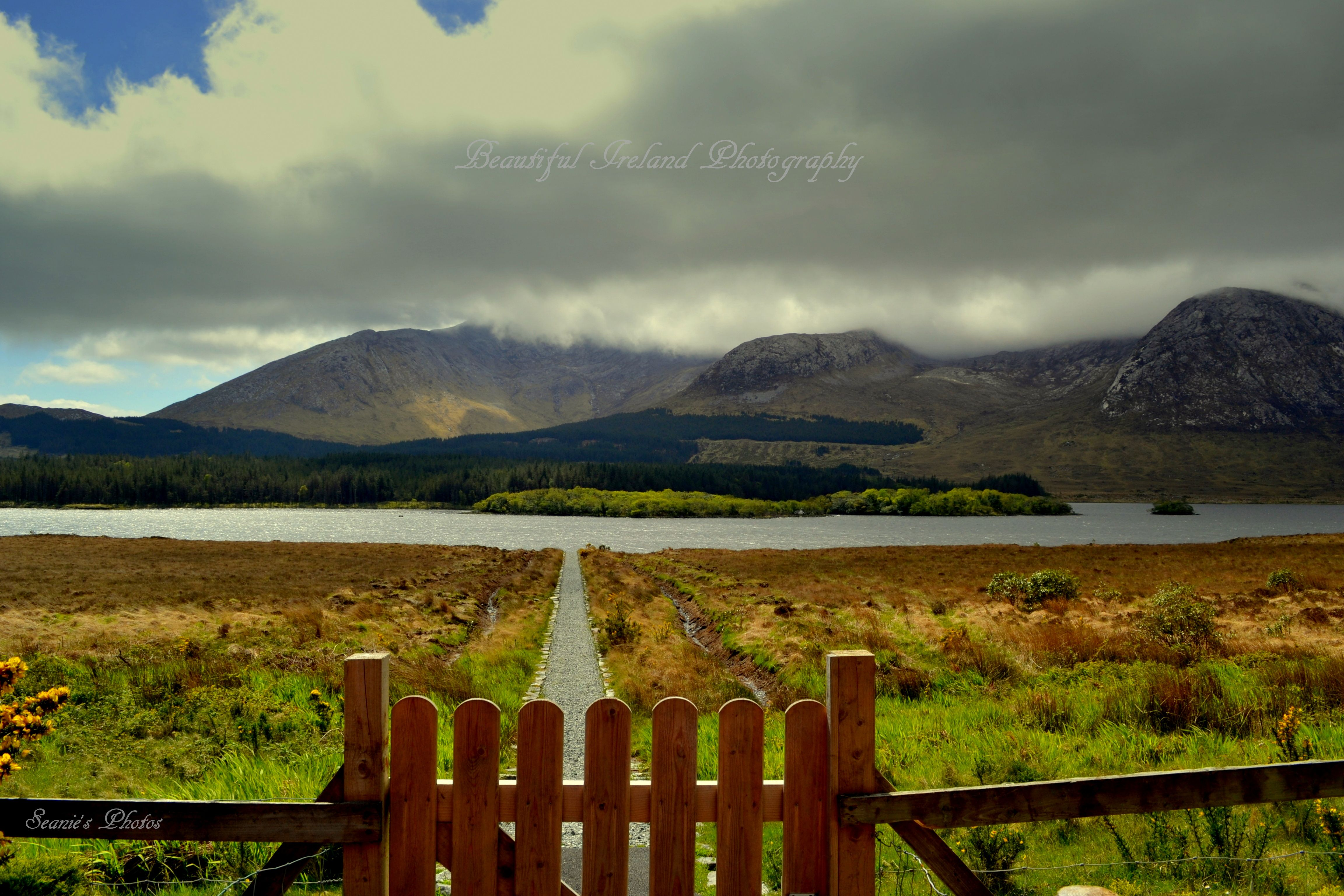 What a lovely walk down to this Lake with a View, Wheres my fishing rod gone !! Co, Galway