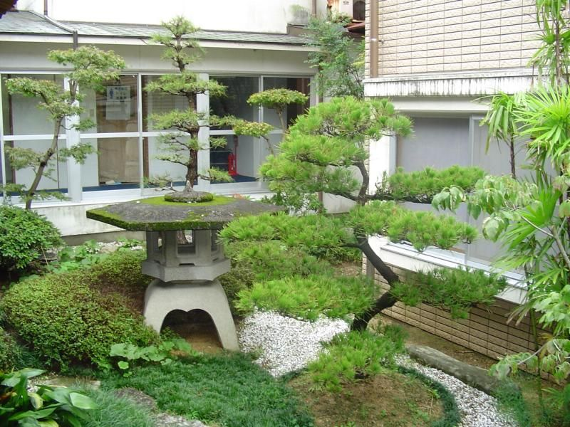 Lovely pagoda and dwarf juniper garden miniature gardens for Japanese style plants