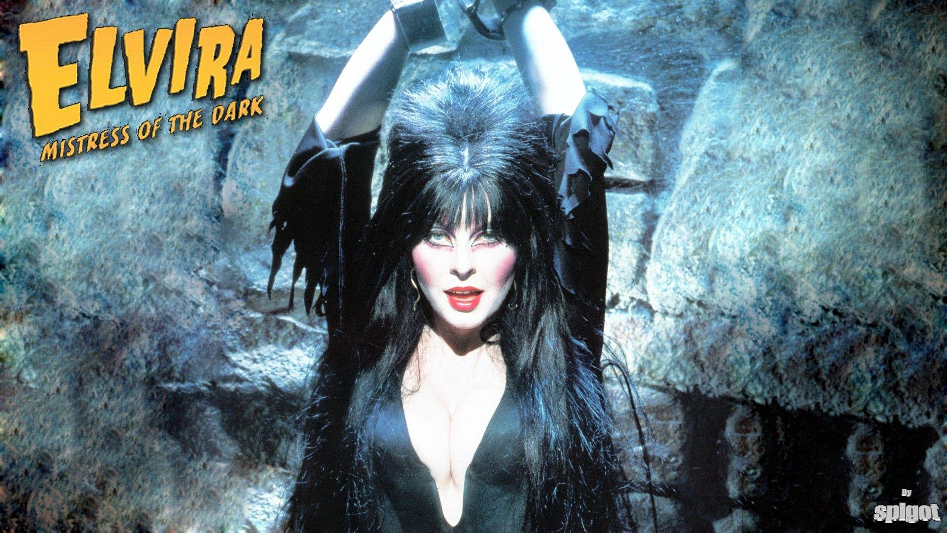 Elvira Wallpaper Elvira Mistress Of The Dark