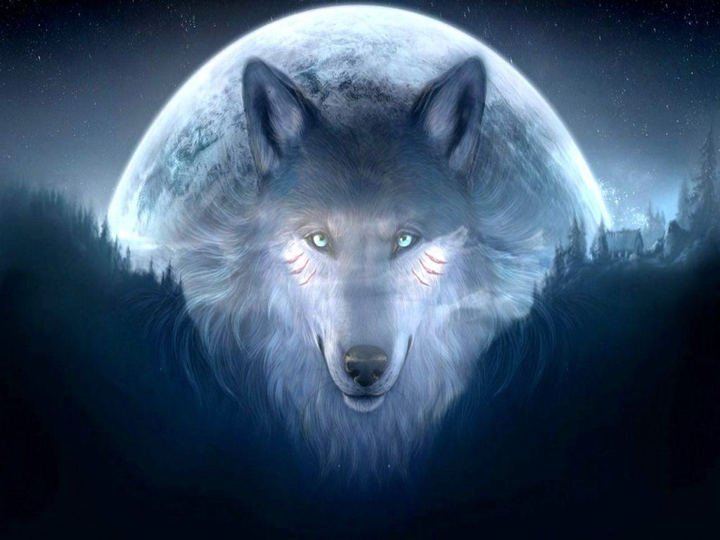 Backgrounds Of Wolves Download