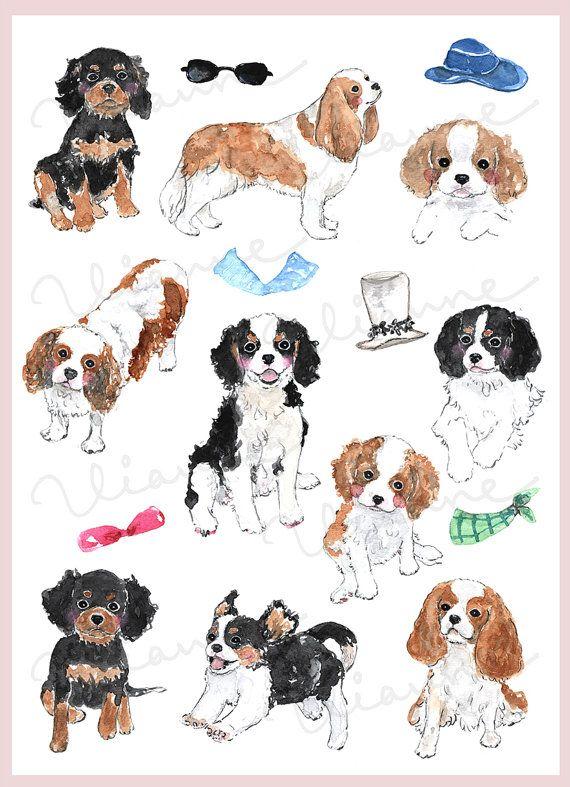Clip Art Watercolor Cavalier King Charles Spaniel Set 19 Images