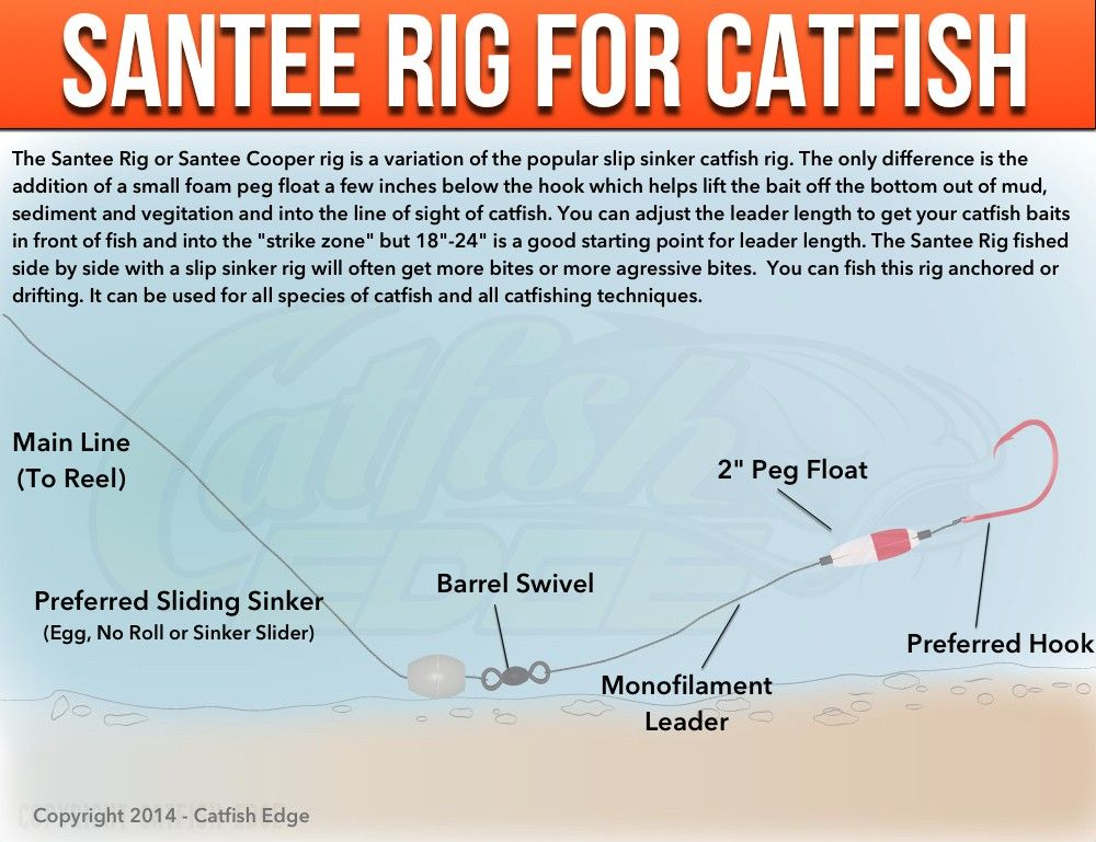 Santee cooper rig for catfish a catfishing essential for Catfish rigs for river fishing