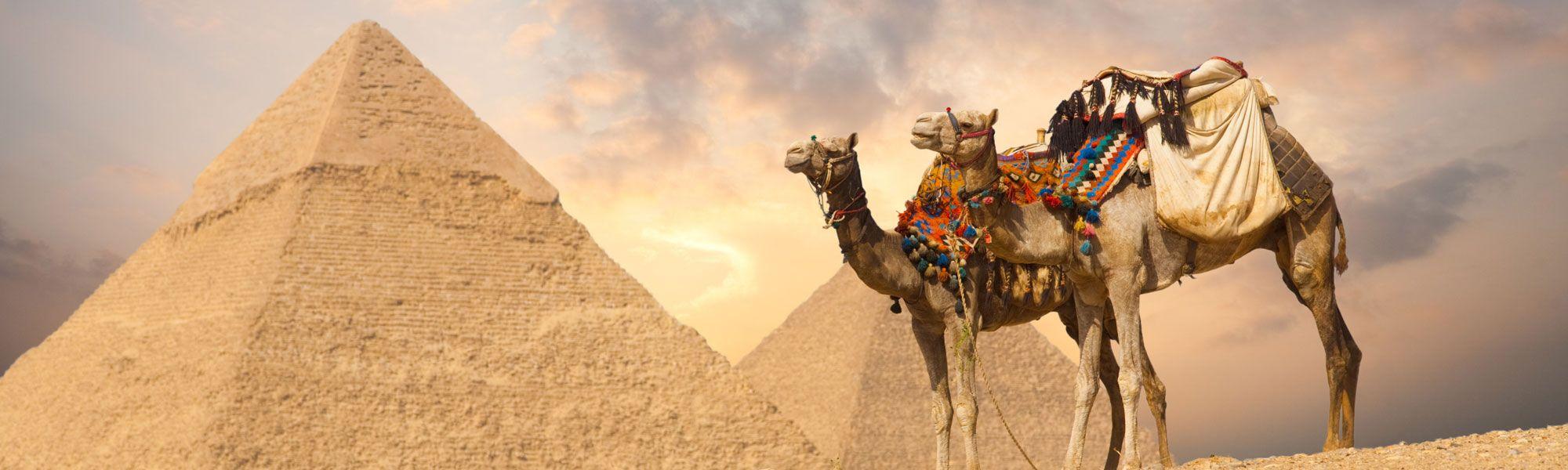 Excursiones Desde El Puerto De El Sokhna Las Pirámides Http Www Espanol Maydoumtravel Com Excursiones En Tierra 5 0 El Cairo Guiza Egipto