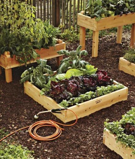Raised #garden boxes