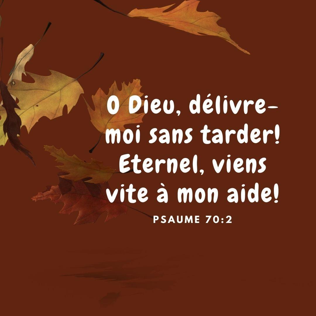 La Bible Verset Illustre Psaumes 70 2