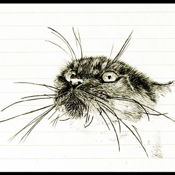 Agitated Cat 4 x 6 print from photo realistic pen drawing on lined - lined paper print out