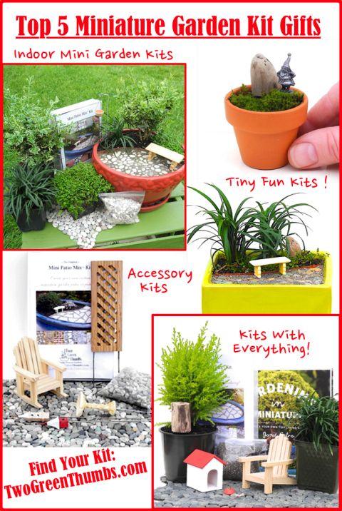 Top 5 Miniature Garden Kits Make Gift Giving Easy