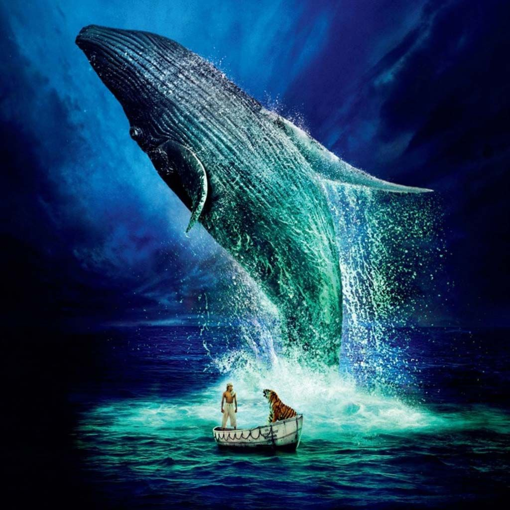 images about i heart whales flora ocean and 1000 images about i heart whales flora ocean and life of pi