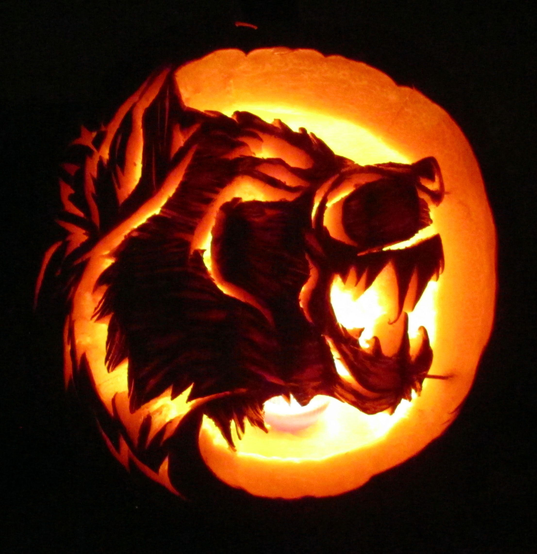 Pumpkin Carving. Werewolf. Oct 2013.  Wolf Hogen Designs© #pumkincarvingdesigns