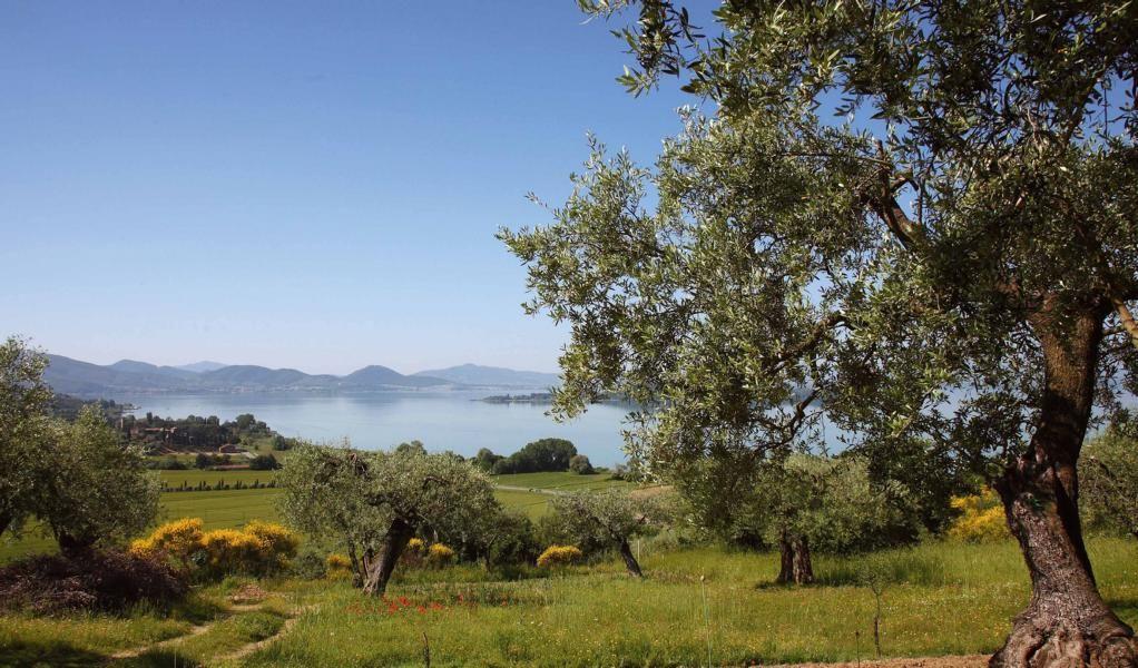 Am Ufer des Trasimeno-Sees liegen zahlreiche Städte und Dörfer ...