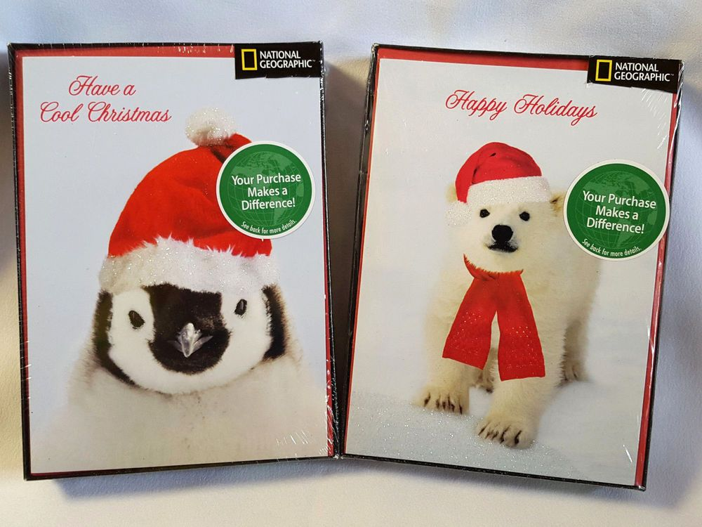 National Geographic Christmas Cards.Details About National Geographic Christmas Cards Penguin
