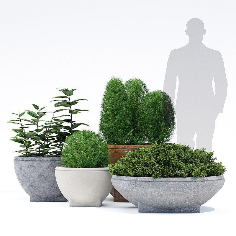 Rosa Planter Model Turbosquid 1400293 Landscapeforms Round Pot Chlorophytum Metal Loft Concrete Ficus Buxus Planters Plants 3d Model
