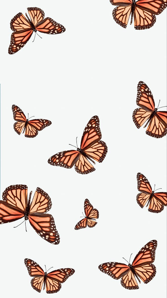 Vsco water android blue water. pinterest ☆ alyssarcamunas | Butterfly wallpaper iphone ...